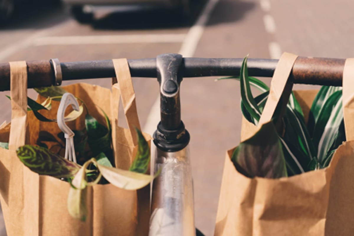 Magasinage écologique : 7 actions simples à poser - Les Rivières
