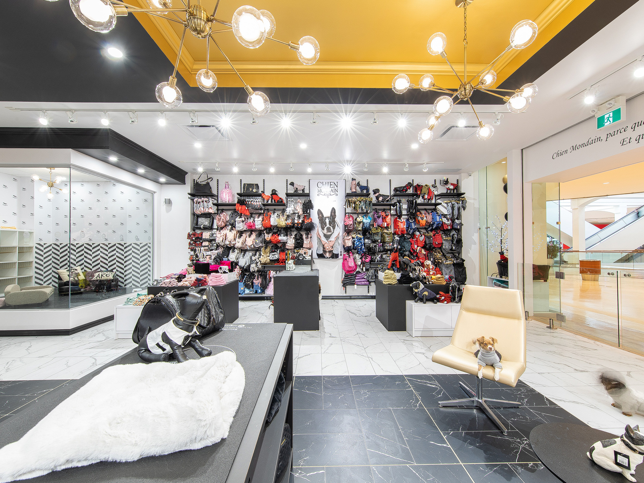 boutique chien mondain rockland montréal